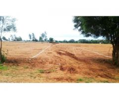 plots for sale in yelahanka | plots for sale in bangalore