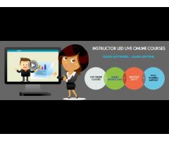 Online Oracle workflow 11g Training