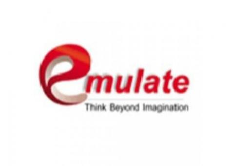 Top SEO Company in Lucknow- Emulate Infotech Pvt. Ltd
