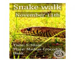 Snake Walk on November 2018  | Entryeticket