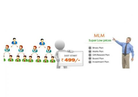 MLM Software at Best Price 499only
