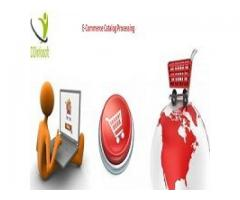 eCommerce Catalog Processing Services by DDInfosoft
