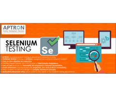 Selenium Training in Delhi by Certified Experts