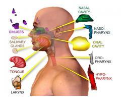 Head and Neck Cancer Specialist in Noida : headneckdoctor.com