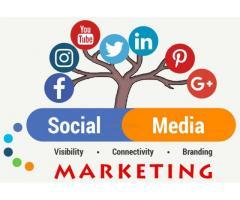Social Media Marketing Agency in Delhi – aspiringteam.com