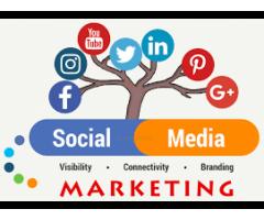 Social Media Marketing Agency in Noida : aspiringteam.com