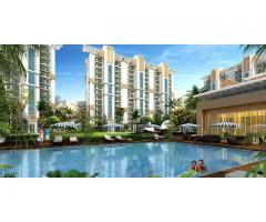 Emaar Gurgaon Greens Ready To Move Residential Apartment In Gurgaon