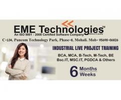 Industrial Training in Mohali