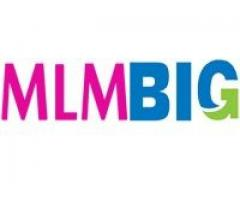 MLMBig Software at Best Price