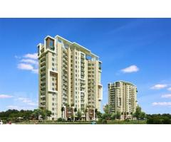 3 BHK With Servant Room and Private Launge at Sector 77 Gurgaon