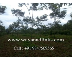 Real estate properties in wayanad.-wayanadlinks
