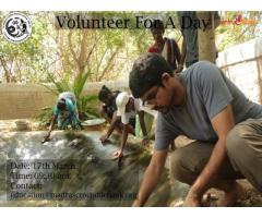 Volunteer For A Day in Chennai- Entryeticket