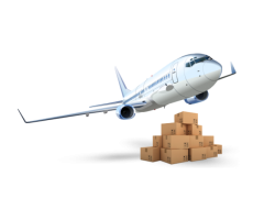 Best Domestic & International Cargo Services in Delhi/NCR