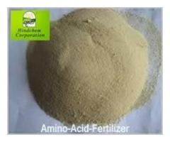 Best Amino Acid Supplier India - Hindchem Corporation