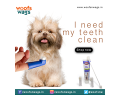Quality Pet Products in Delhi