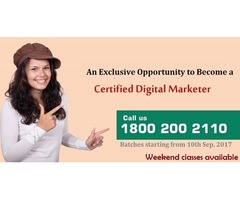 Learn & Build Your Career in Digital Marketing