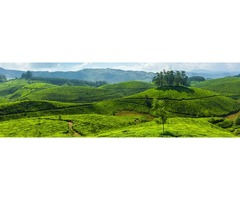 Best Kerala Tour Packages | student Tour Operator | Honeymoon Packages |Seasonal Trip