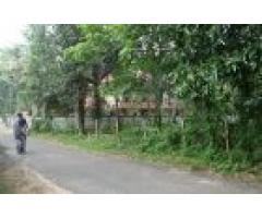 42 Cents of Residential land for sale at Cherukole,Mavelikara, Alappuzha