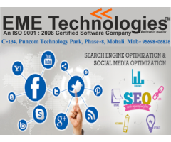 seo summer training in mohali