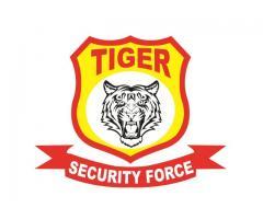 TIGER SECURITY FORCE