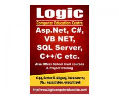 CCC, O level, ASP.Net, Php,Java,Python,SqlServer, Php,MySql,Oracle