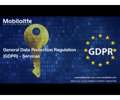 GDPR Compliance Consultant