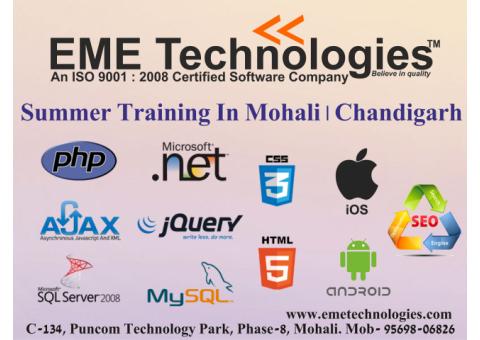 Summer Training In Mohali