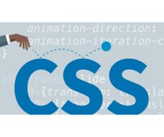 CSS Training in  Bangalore