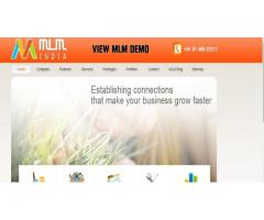 MLM software company, MLM binary website custom software services provide in all over india