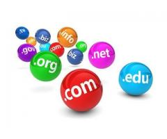 Domain Transfer And Renewal In India  | Sathya Technosoft