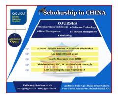 Scholarship In China