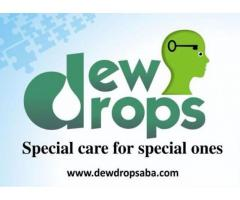 Dew Drops Child Health Care ABA Therapy and Autism