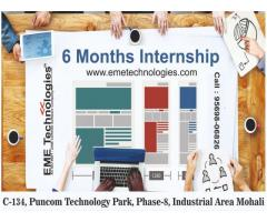 6 Month industrial Training In Mohali
